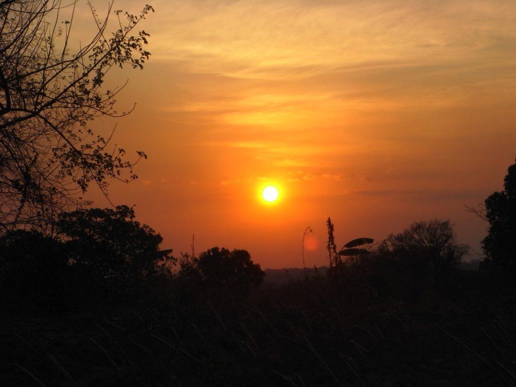 "Pannocchie, storia di un ""acunha"" in Africa"